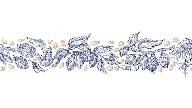 カカオシームレスパターンテクスチャボーダーフルーツ豆の木のアートスケッチ