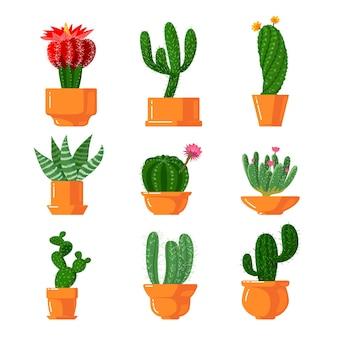 Набор иконок кактусов и суккулентов.