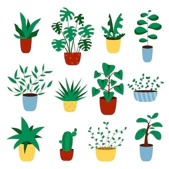 냄비에서 자라는 선인장과 다육 식물. 집 식물의 벡터 선인장과 succulents 컬렉션입니다.