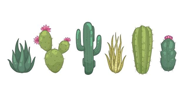 Иконы кактусов и суккулентов. кактусы домашних растений, изолированные на белом фоне.