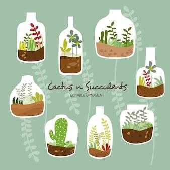 선인장과 다육 식물