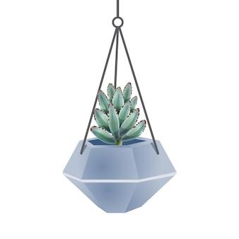 Composizione in cactus con immagine isolata di agave cactus in vaso di fiori su bianco