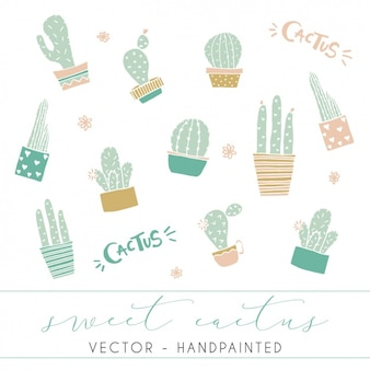 Cactus designs collection