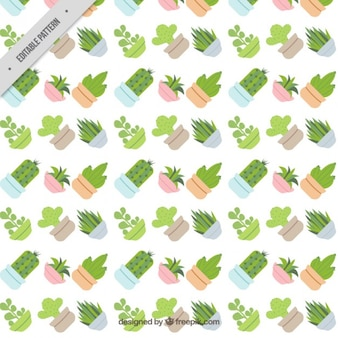 Cactus flat design pattern
