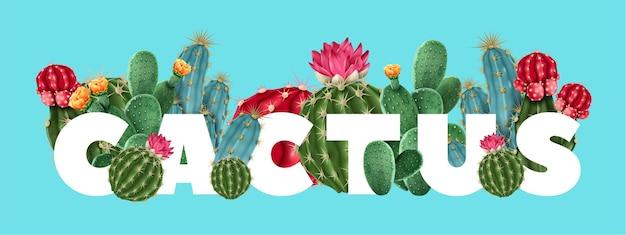 Цветочный тропический кактус с различными разновидностями суккулентов и кактусов, включая гимнокалициум и опунцию.