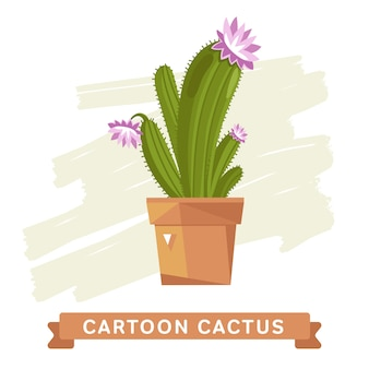 Cactus flower,  isolated.