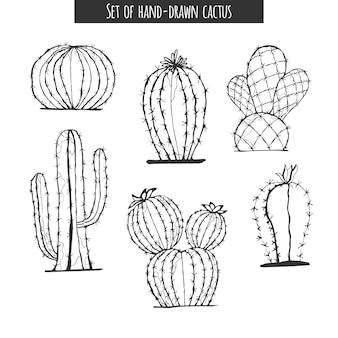 Кактус рисованной. набор кактусов, изолированные на белом фоне.