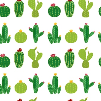 Cactus icon collection seamless pattern background