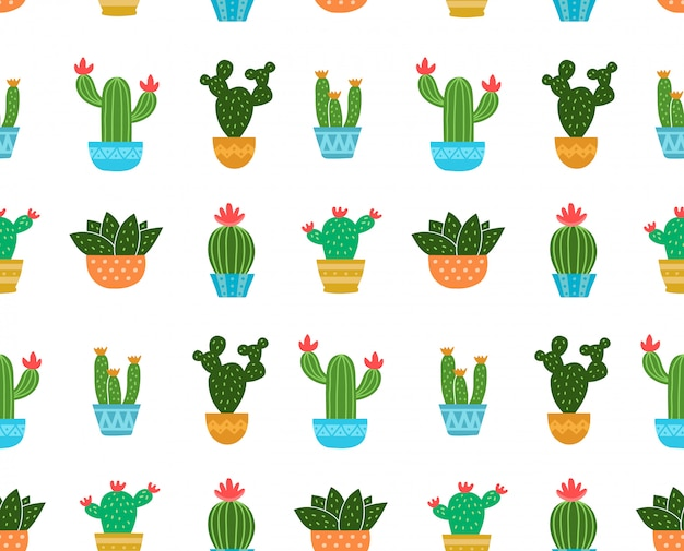 Cactus illustration seamless pattern. isolated on white . cactus