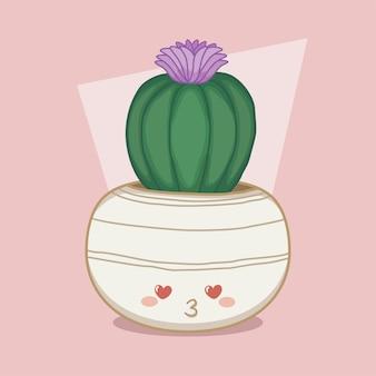 かわいい丸い鍋にサボテン