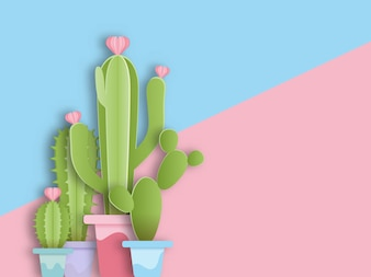Cactus in pod with copyspace background