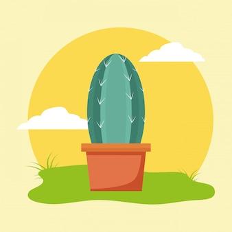 Кактус в горшке в саду