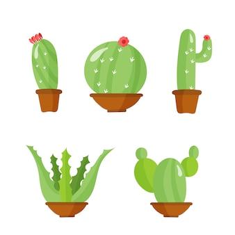鉢の中のサボテン、花が付いている家の植物。緑の植物、自然、花とエキゾチックな野生の植物学熱帯。の植木鉢のセット。アパートは漫画のスタイルです。イラスト、。