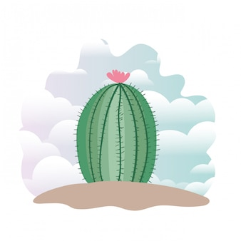 Cactus in landscape isolated