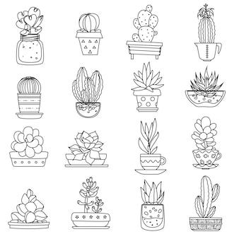 Cactus line icons set