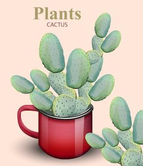 빨간 냄비에 성장하는 선인장 식물