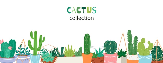 Cactus plants in garden pottery with green hand written font banner