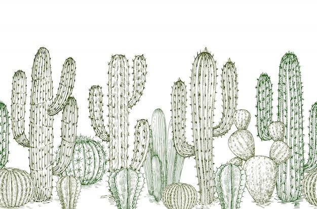 サボテンのシームレスなパターン。西部の風景イラストの砂漠のサボテンの植物無限の境界線をスケッチします。