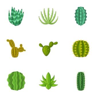 Cactus set, cartoon style