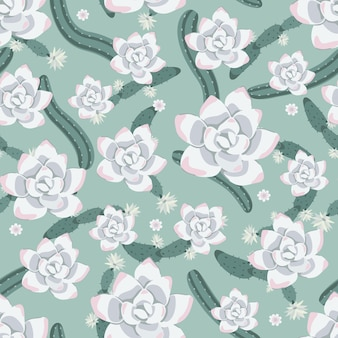 Cactus and succulent flowers patterns background