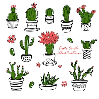 Cactus and succulent hand drawn set in sketch style. doodle colors flowers in pots.   colorful cute house interior plants.