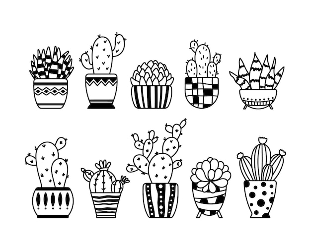 Cactus and succulent isolated clipart potted plants elements outline houseplants flower in pot