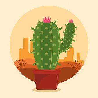 Cactus succulent pot on desertscape