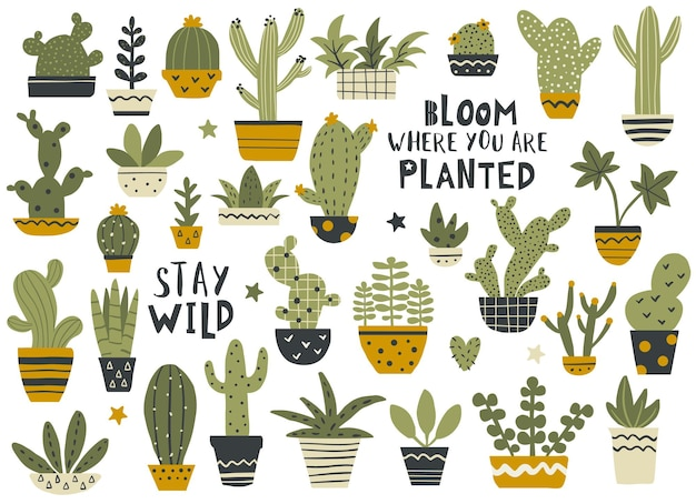 Cactus and succulent set with calligraphy quotes, houseplant collection. hand drawn vector illustration.