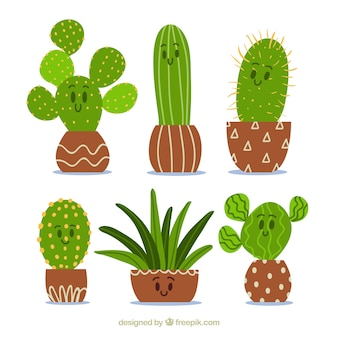Cactus with facial expression collection