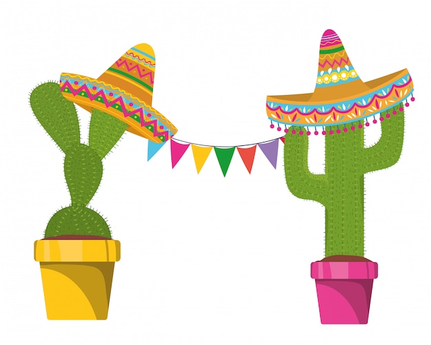 Cactus with pot and mexican hat icon