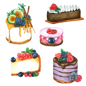 Cake hand pained in watercolor collection