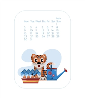 Calendar design template for  year of blue tiger chinese new year may vector stock flat illustration...