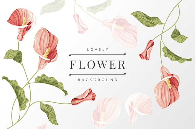 Calla lily flower background template