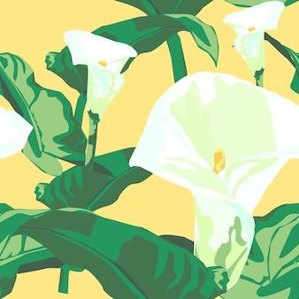 봄에 칼라 백합입니다.