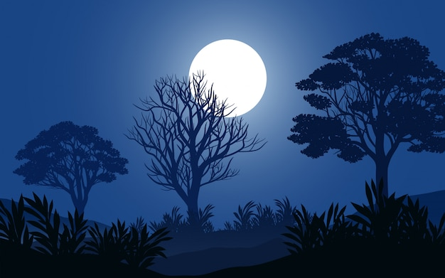Calm night in forest with full moon