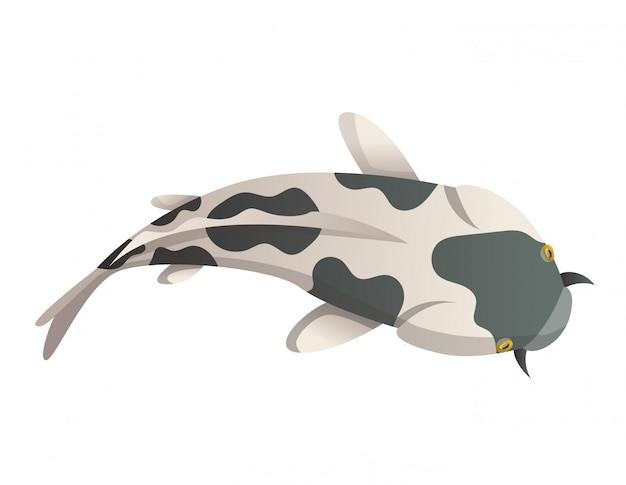 침착하게 떠 다니는 물고기. 잉어 물고기 그림 일본 잉어, 아시아에서 화려한 동양 잉어. 중국 금붕어, 전통 어업 배경에 고립