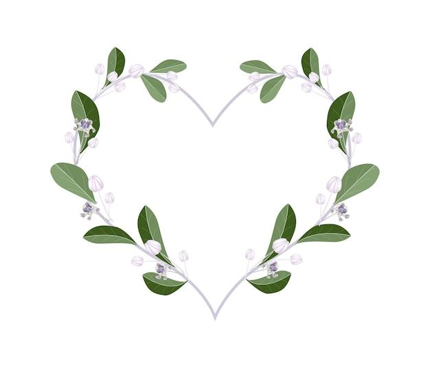 Calotropis gigantea 꽃 심장 모양