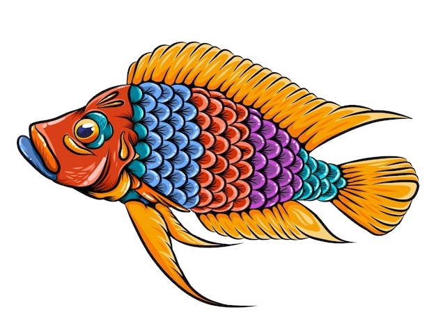 큰 입과 주황색 지느러미가있는 calvus cichlid 물고기 zentangle
