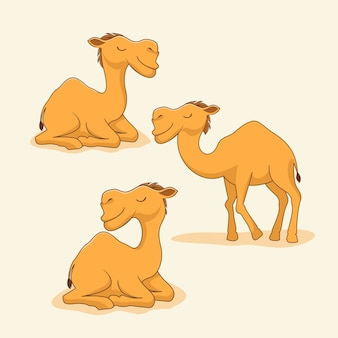 Camel cartoon cute animals sit