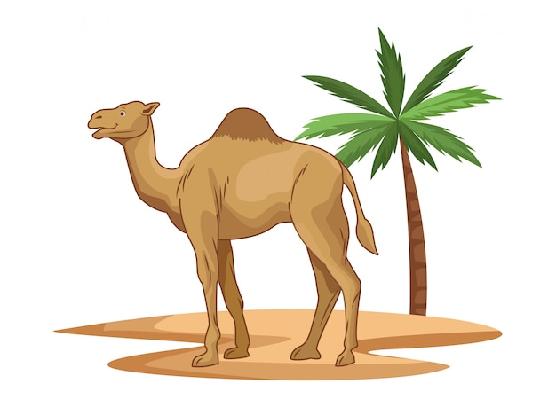 Camel in desert with palm tree cartoon isolated