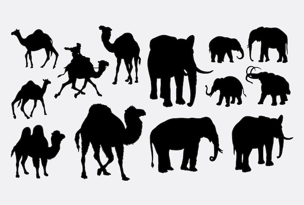 Camel and elephant animal silhouette
