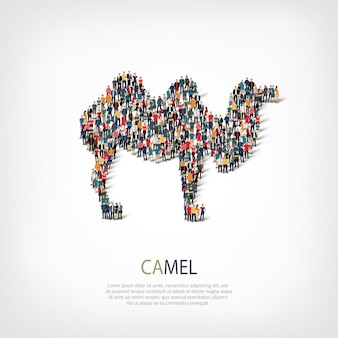 Camel  icon illustration