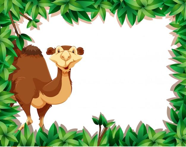 A camel on nature frame