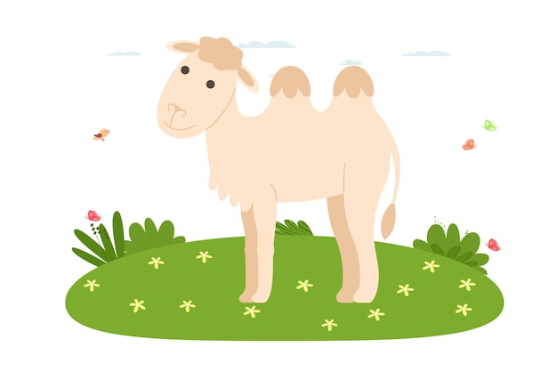 낙타. 애완 동물, 국내 및 농장 동물. 낙타는 잔디밭을 걷고 있습니다. 만화 평면 스타일의 벡터 일러스트 레이 션.