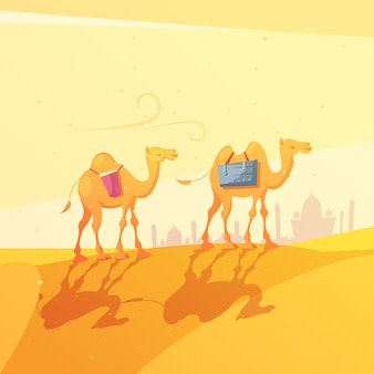 Camels in desert cartoon illustration