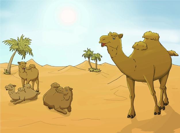 Camels in the desert illustration