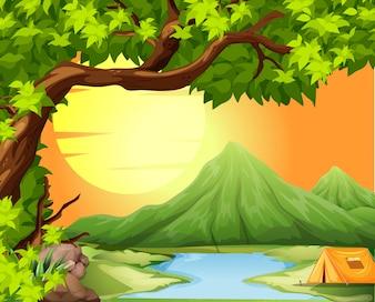 自然の中でのキャンプ