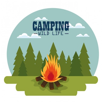 Camping zone with campfire