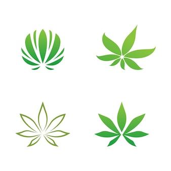 Canabis marijuana sign symbol illustration design template