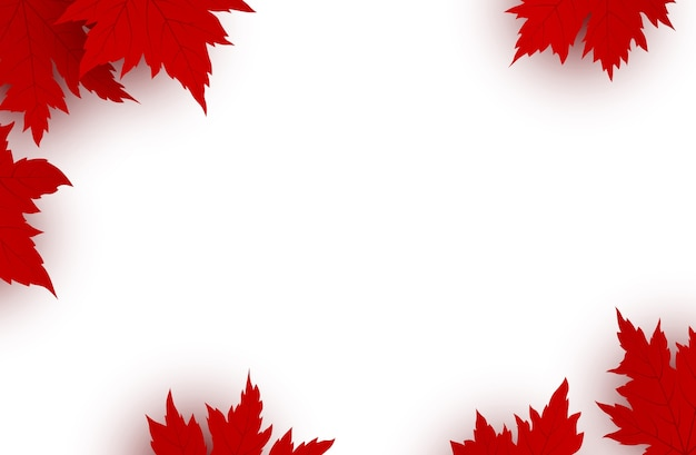 Canada day background of red maple leaves